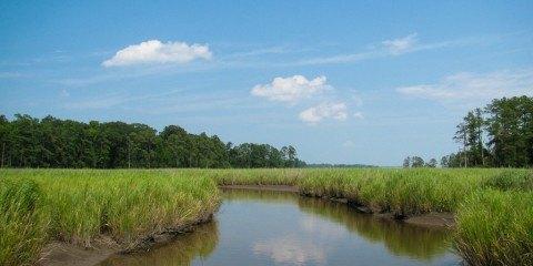 §3 natur Foto National Park Service