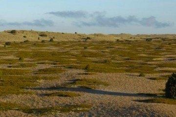 Anholts ørken