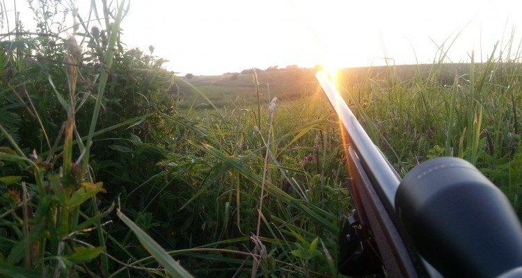 jagt mens man venter på bukken