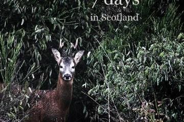 7_days_in_scotland