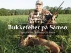Bukkefeber på Samsø