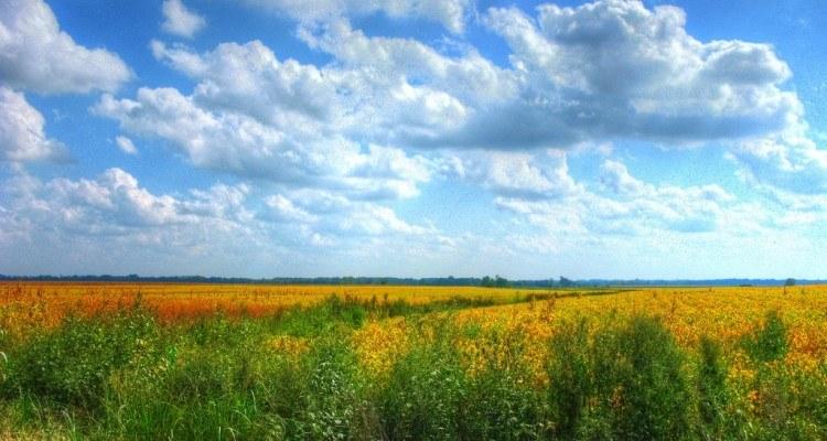 Naturpleje i landbruget David DeHetre