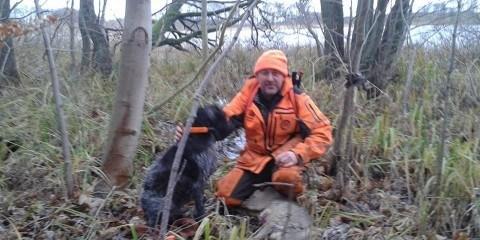 Schweisshundeføren og hunden
