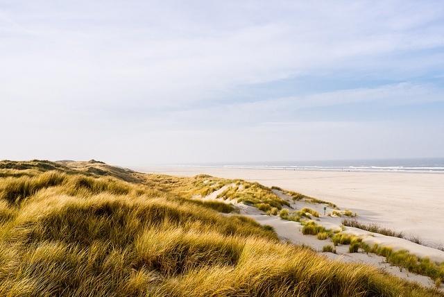 Strand natur x1klima Flickr
