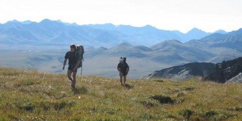 Wilderness Alaska Foto Paxson Woelber