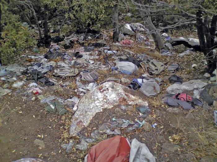 Affald i skoven