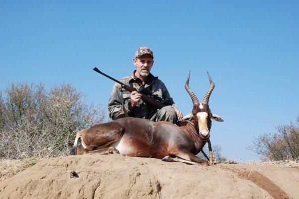 bleesbuk jagt i sydafrika jagt