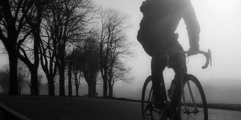 cykelrytter pakører krondyr