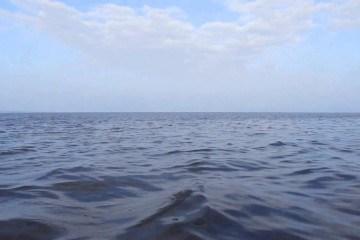 Video thumbnail for youtube video En ny havjæger er født - Videoer - Jagt Magasin - Jægernes Magasin