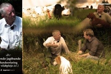 Film om stående jagthunde