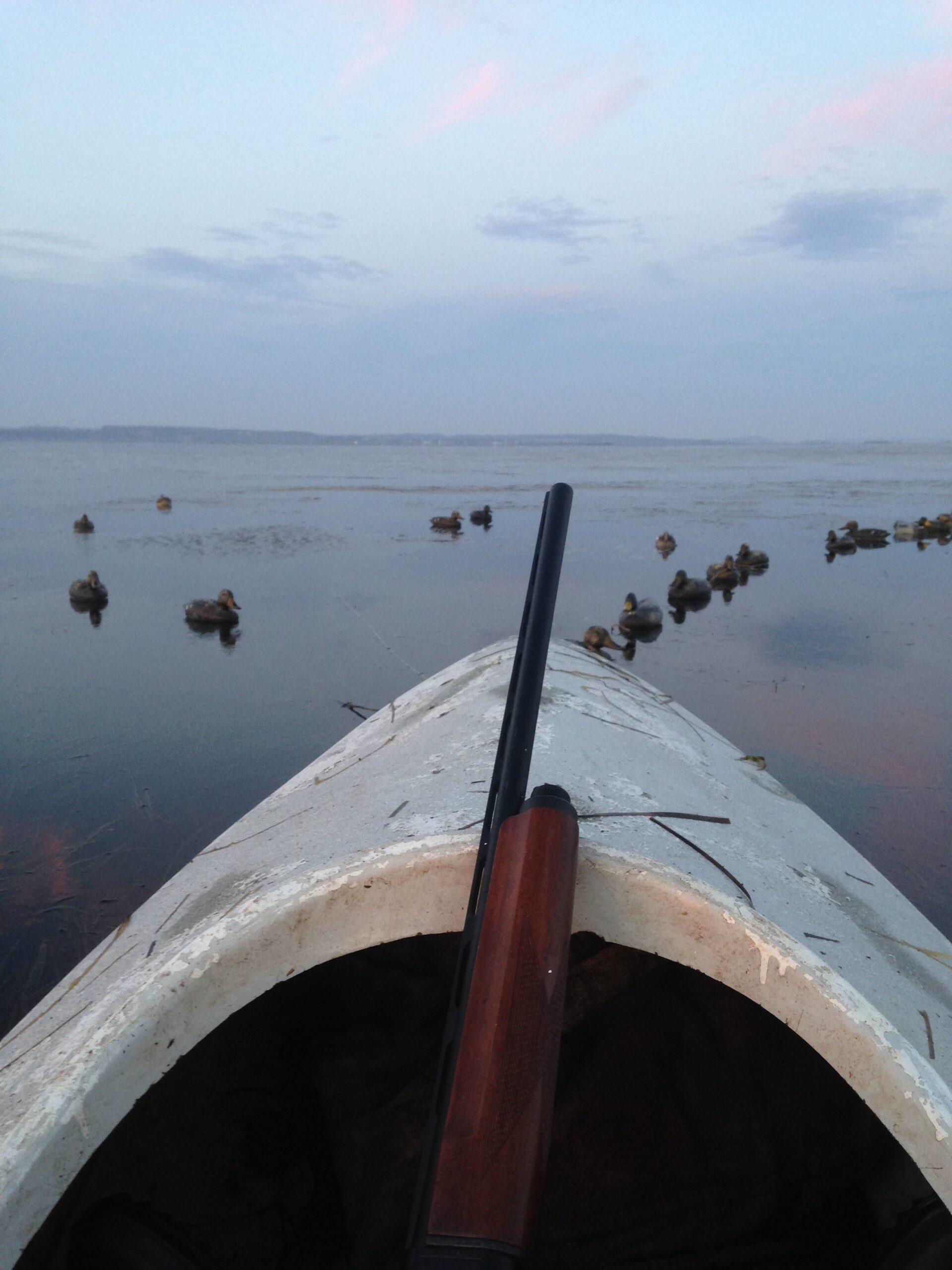 På fjorden i oktober