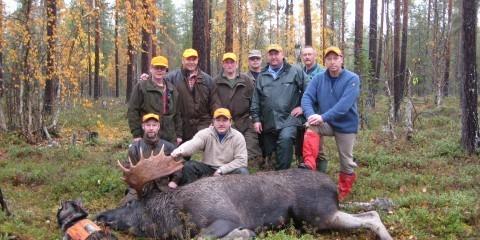 Moose hunt in Lapland