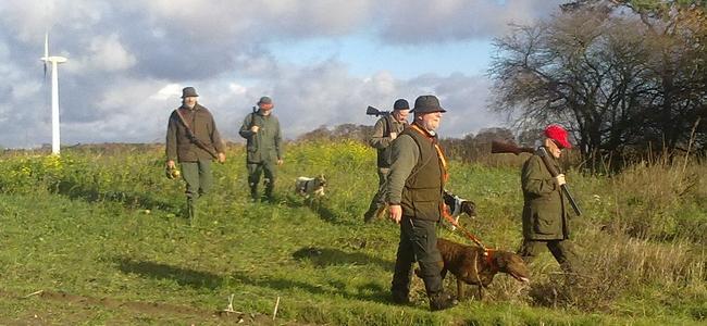 jagt drivjagt fasaner ræve