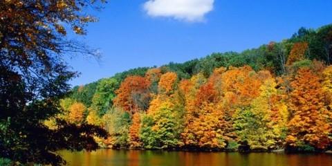 jagt oktober