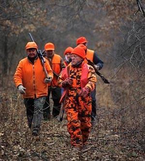 jagtforsikring