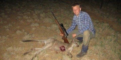 kænguro jagt