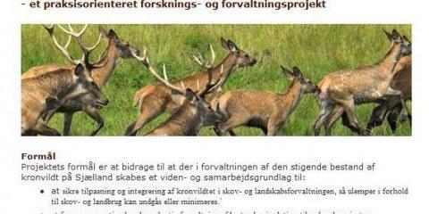 Kronvildt på Sjælland - Forskningsprojekt