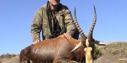 afrikansk dyr jagt