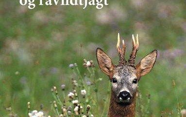 ravildt_og_ravildtjagt