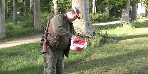 Video thumbnail for youtube video Regulering af råger og rågeunger - Jagtformer, Leksika - Jæger Magasin